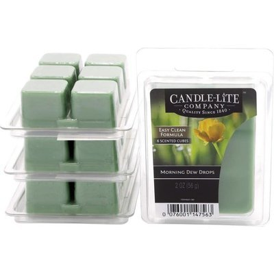 Candle-lite Everyday Collection wax melts 2 oz 56 g - Morning Dew Drops